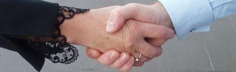 Demanda de divorcio por mutuo consentimiento