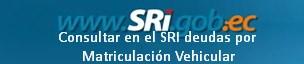 Consultar en el SRI deudas por Matriculación Vehicular