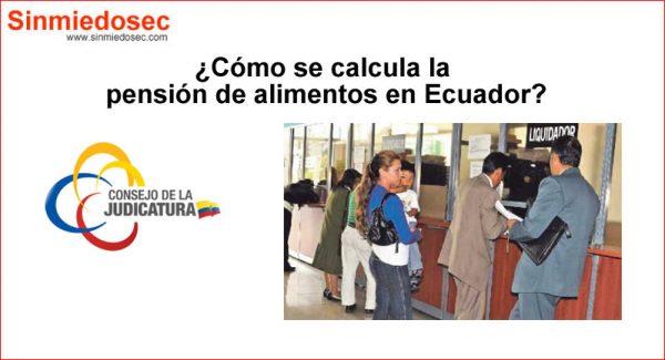 ¿Cómo se calcula la pensión de alimentos en Ecuador?