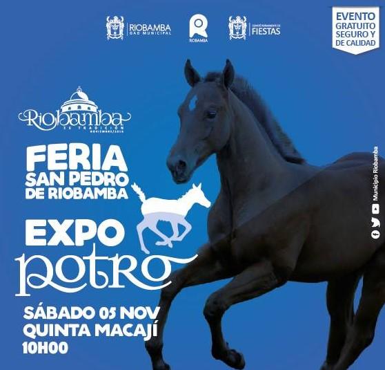informacion-de-la-feria-san-pedro-de-riobamba-nov-2016-1