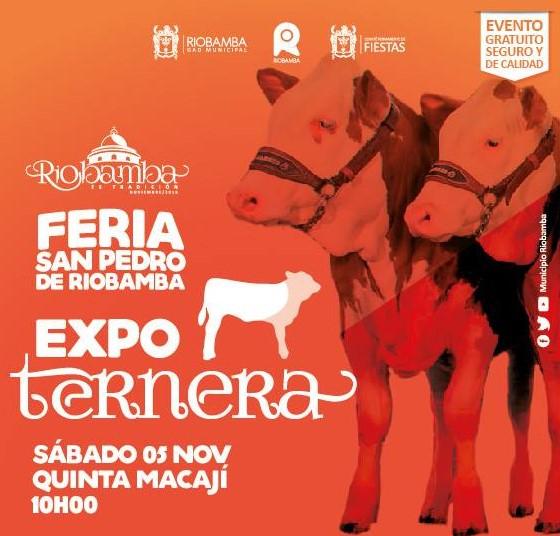 informacion-de-la-feria-san-pedro-de-riobamba-nov-2016